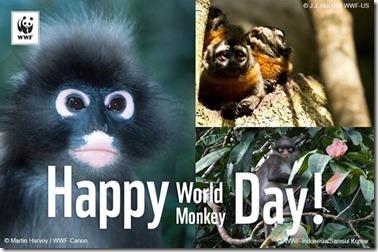 World Monkey Day